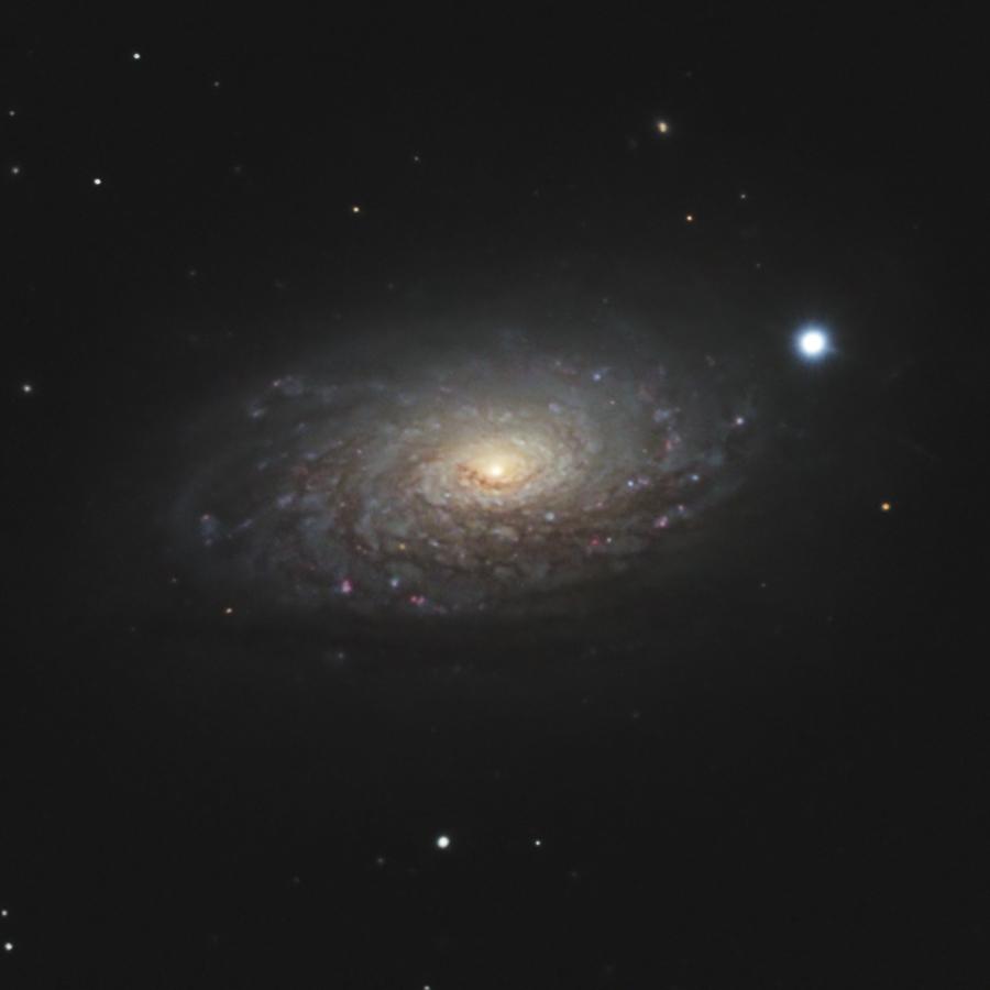 M63, Sonnenblumengalaxie