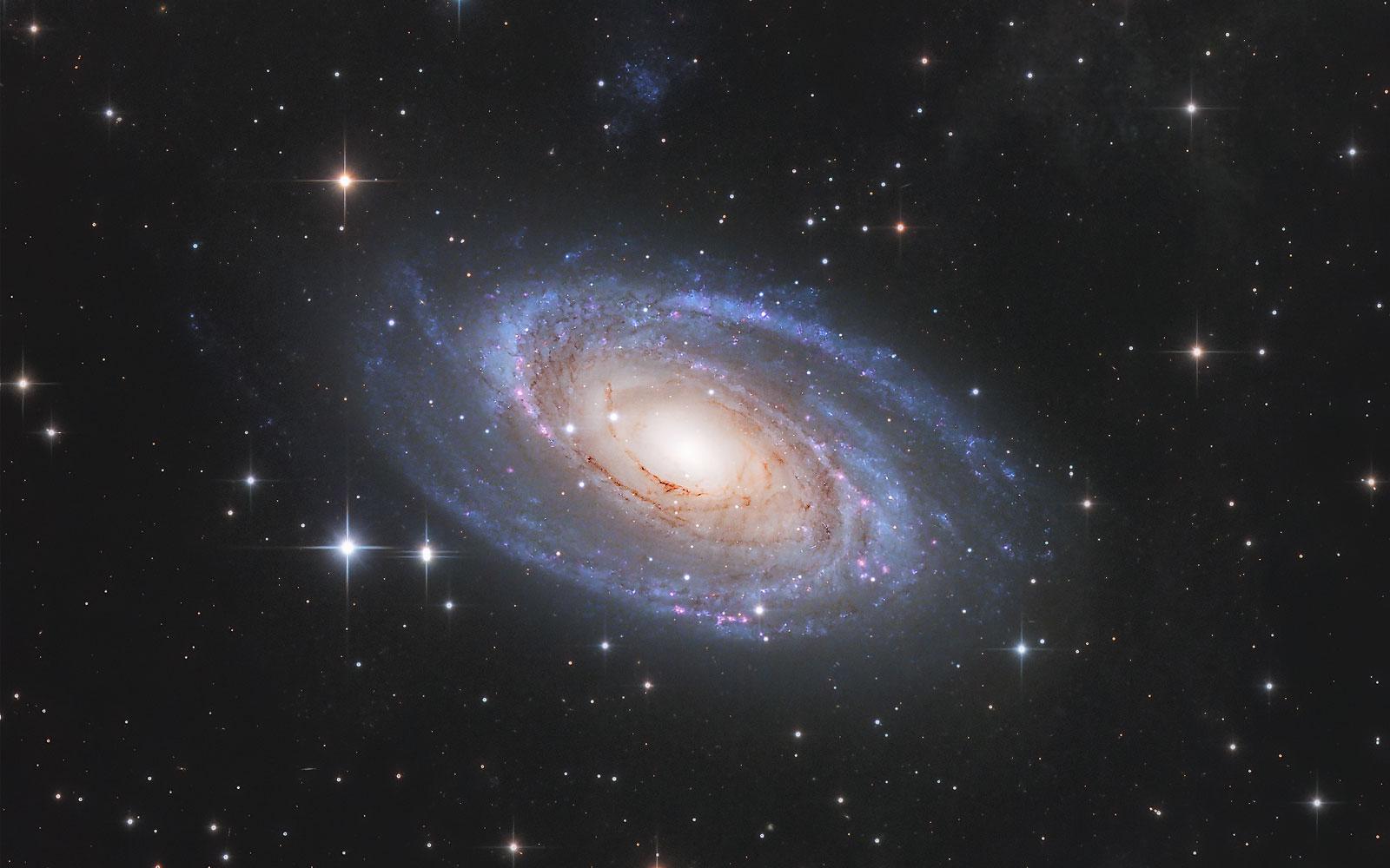 Messier 81 Bodes Galaxie von Claus Müller
