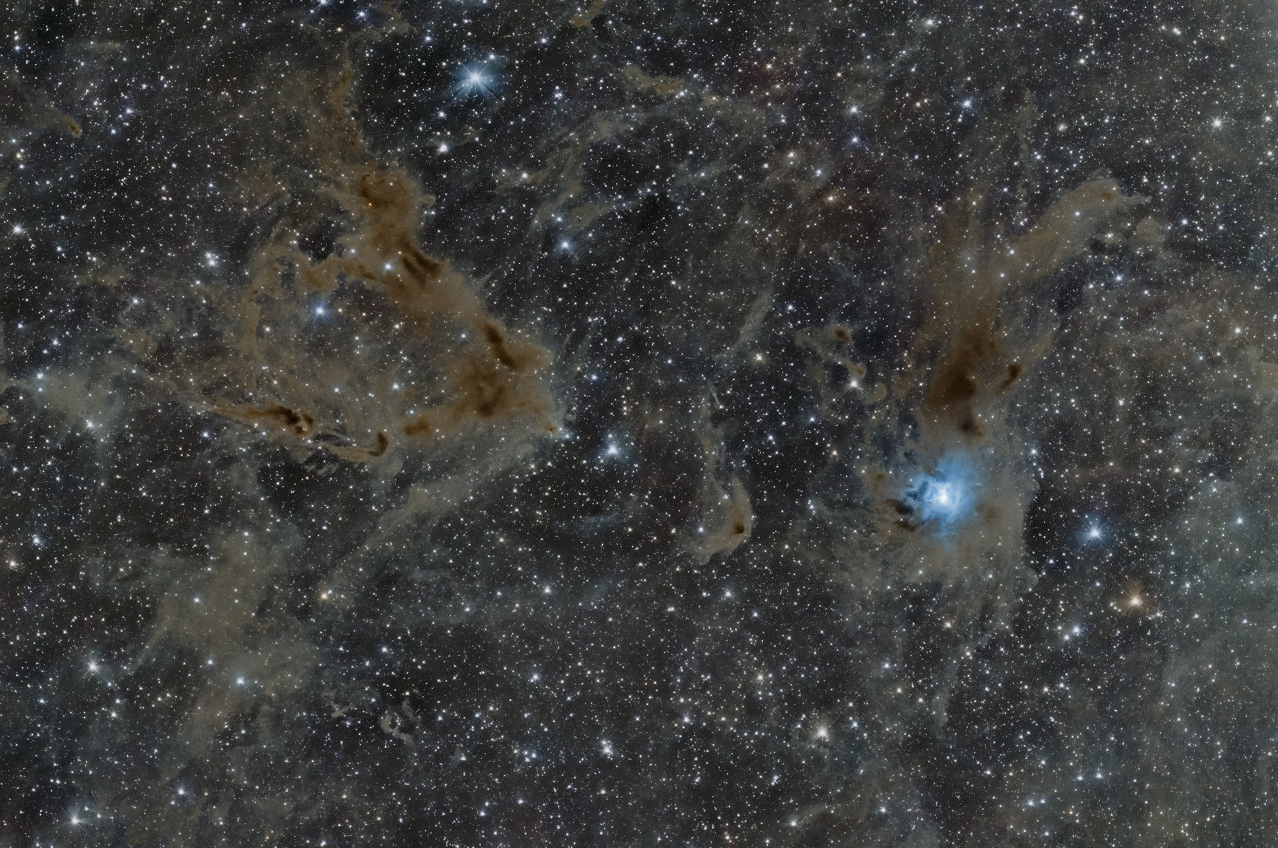NGC 7023 Der Irisnebel und LBN 768 Dunkelnebel