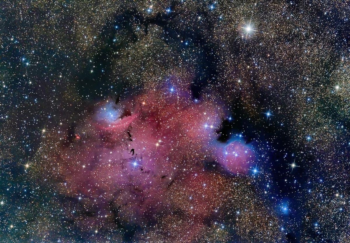 NGC 6559 von Claus Müller