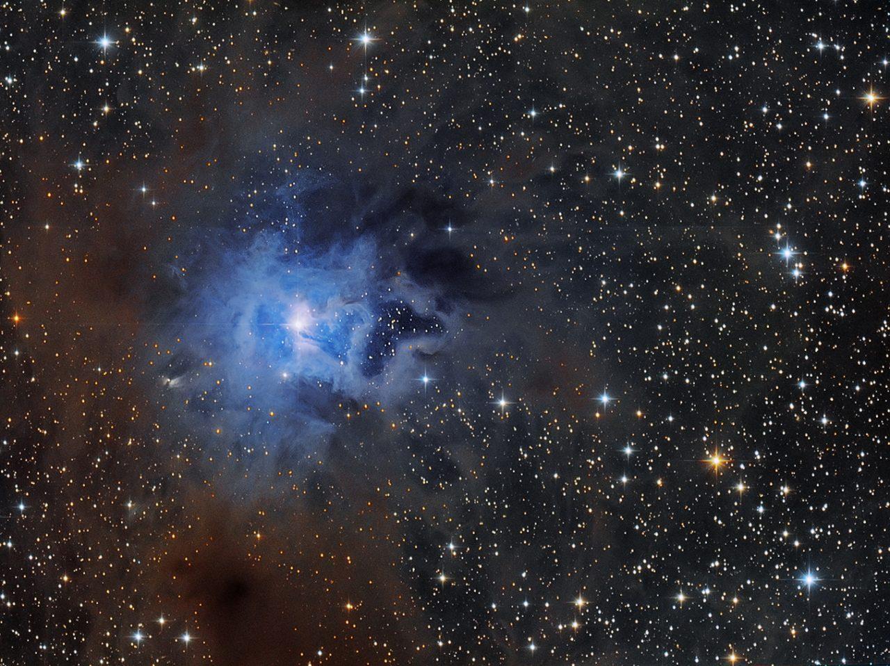 NGC 7023-Iris Nebula, von Paul Schuberth