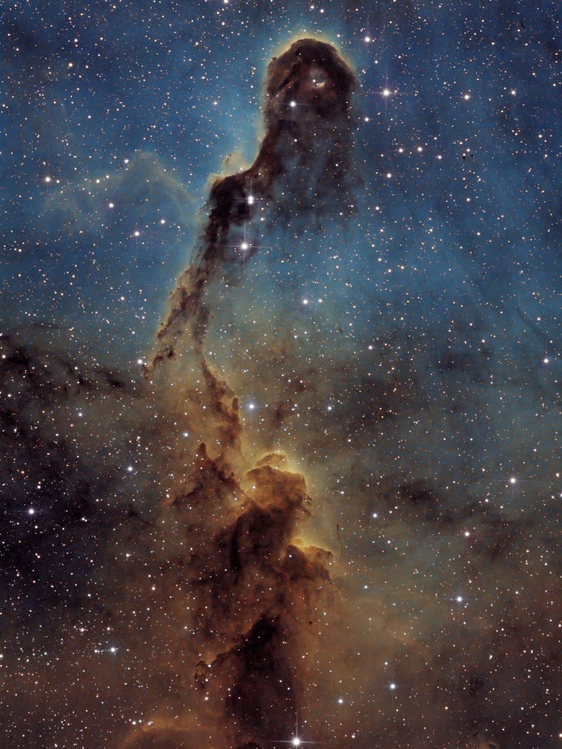 IC1396, Elefantenrüssel Nebel, SHO, Thomas Richter