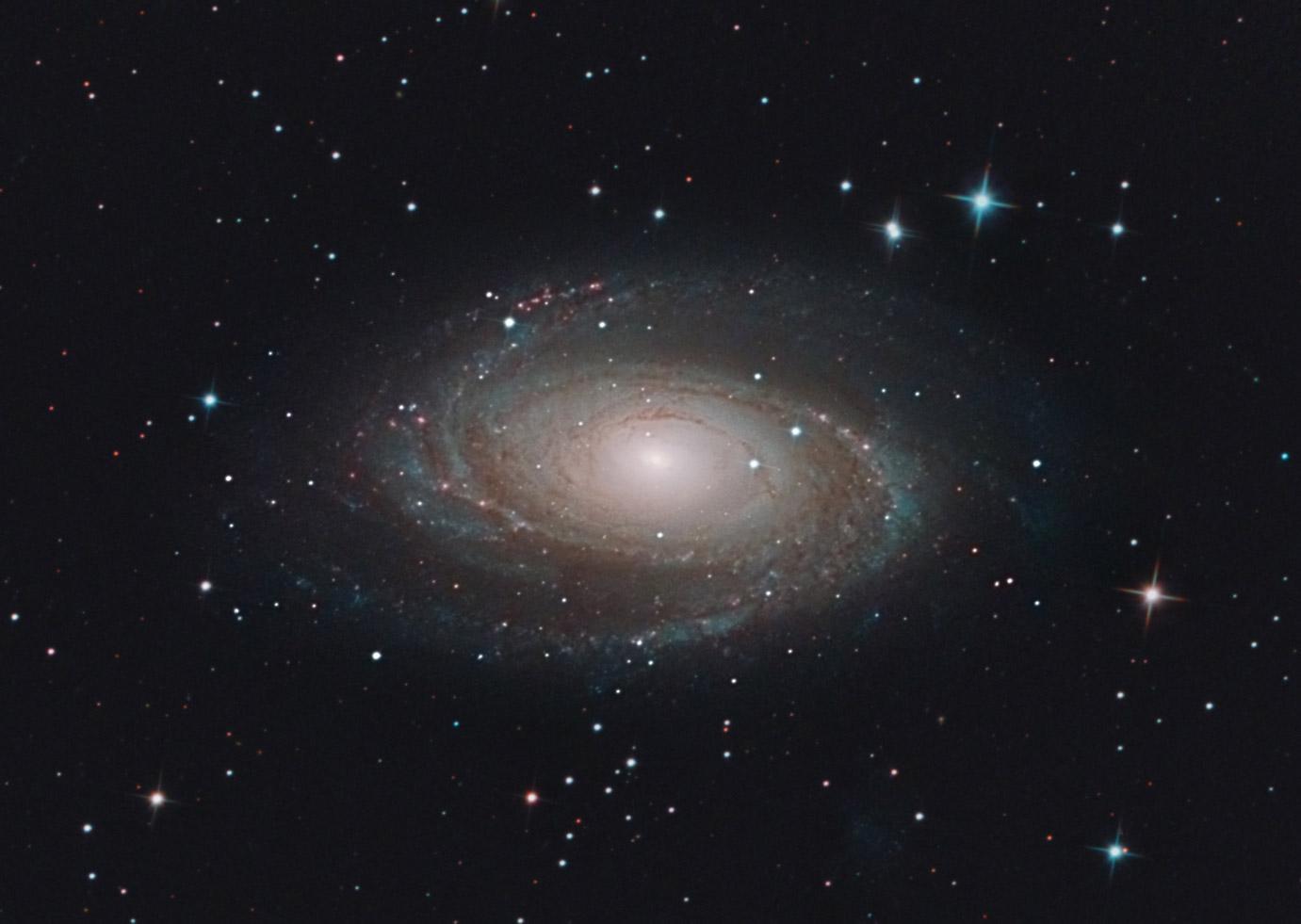Messier 81 Galaxie von Stefan Westphal
