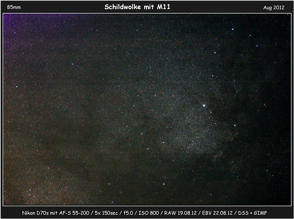 Messier 11 von Thomas Will
